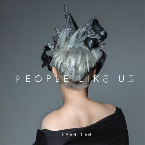 album-people-like-us